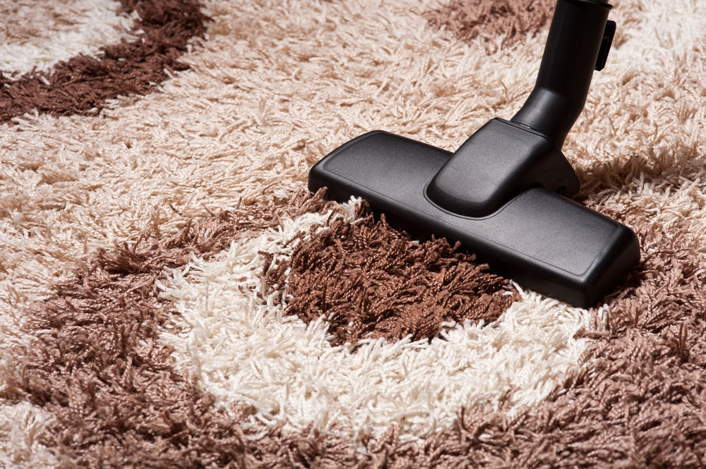 The 15 Best Vacuums For Shag Carpet Reviews Amp Guide 2019